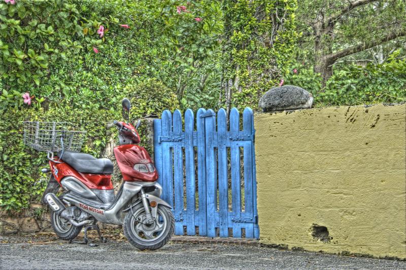 scooter3imgs.jpg
